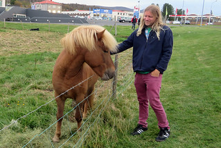 iceland-blond-horse | by quirkytravelguy