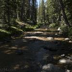 South Fork Cascade Creek