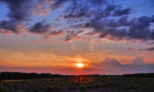 sunset sun night clouds evening