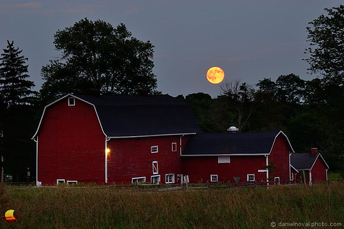 statepark red moon ny newyork grass night barn rural fence outdoors buffalo dusk farm july fullmoon 31 bluemoon eastaurora 2015 knoxfarm etbtsy