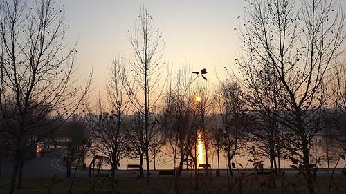 parcultitan lake park sunset winter