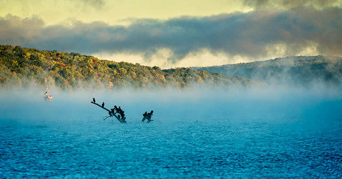 rowing 2016 cny camera centralnewyork fingerlakes ithaca ny newyork sonya7rii tompkinscounty fall cayugalake sony70300mmf4556goss mist fog dawn sunrise cormorant colors