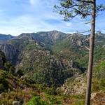 Chemin du Castedducciu par le Finicione RG