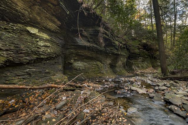 Pennsylvanian shale outcrp, Piney Falls SNA, Rhea County, Tennessee