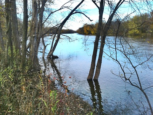 river michigan usa november autumn fall 2017 thegrandriver outdoors outside creation nature creativecommons