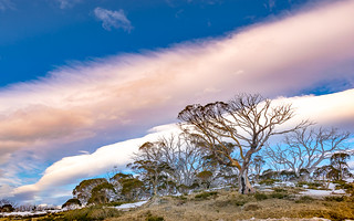 perisher | by shav.bird