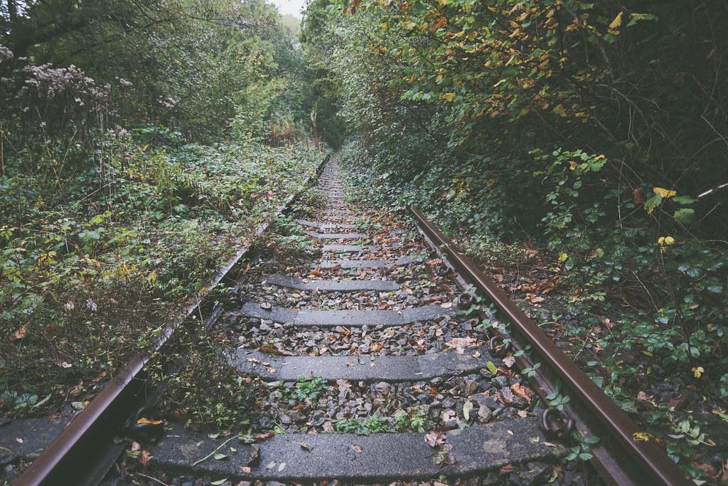 When nature takes over - Machen Train Tracks