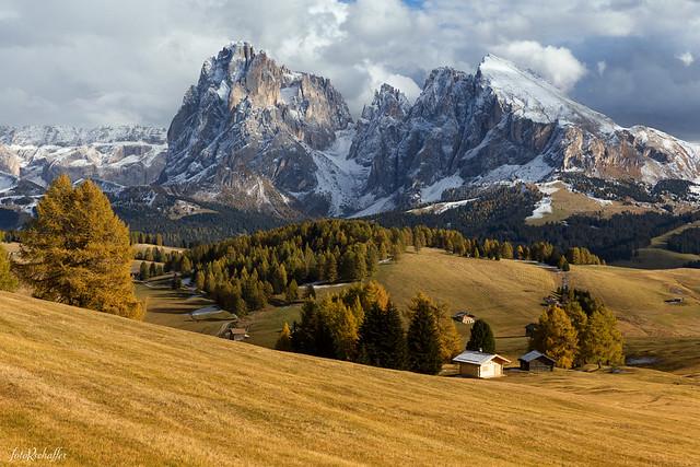 Autumnal Alpe Di Siusi