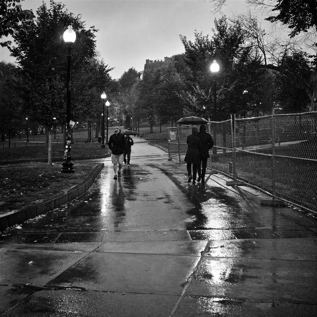 Rainy Sunday On Boston Common Umbrellas In Force On Boston Flickr