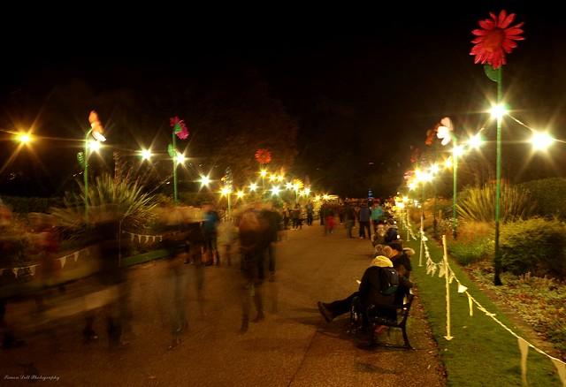 public sheffield botanical gardens 2017. (11)