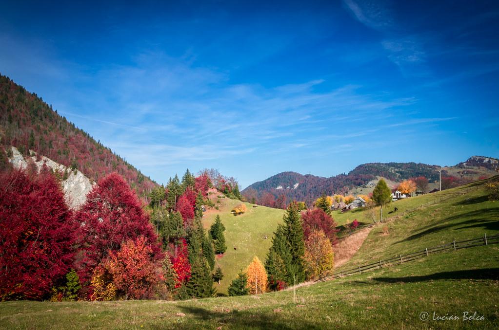 Autumn Landscape Colorful Fall Scene In A Mountain Village