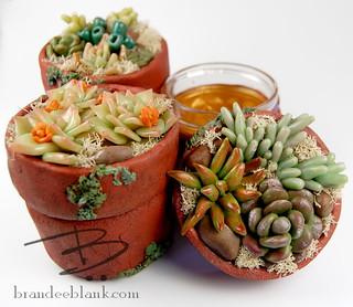 Faux Succulent Stash Jars