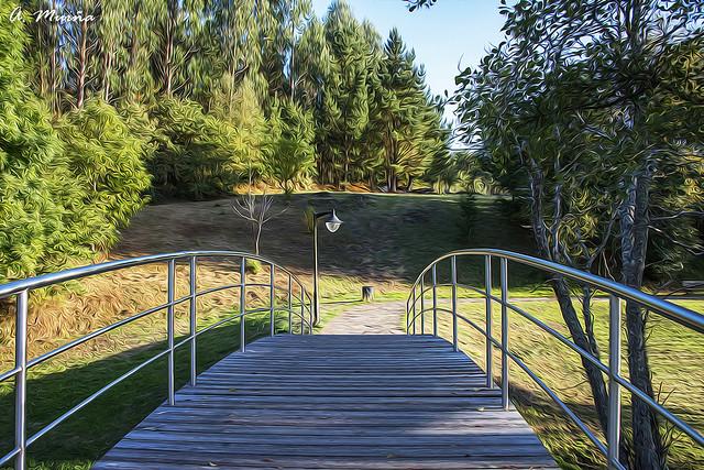 Footbridge in the park. Pasarela en el parque