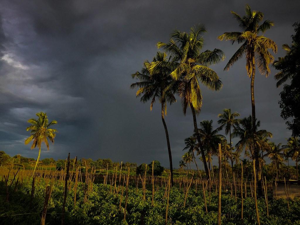 Rainy Day Iphone Click Ananda Raj Flickr