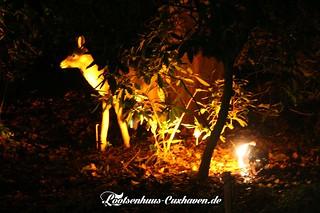 Weihnachtsmarkt-Cuxhaven-2014_09   by Stilkollektiv
