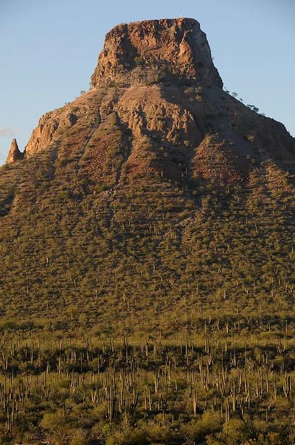 Deserto in Baja California