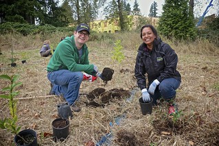 Planting trees at Marymoor Park | by kingcountyparks
