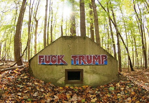device concrete graffiti fuck trump art sewer storm water system leaves fall autumn forest hole septic waste tank crude vulgar presidential vault tomb donaldtrump