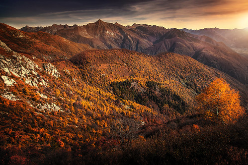 switzerland ticino cardada autumn autumnforest alps mountains mountainvalley eveningmood eveningsky sunset