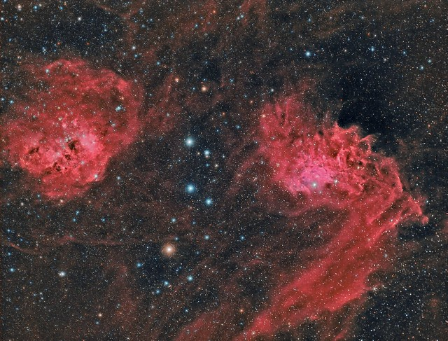 The Tadpoles and the Flaming Star (IC410 and IC405)