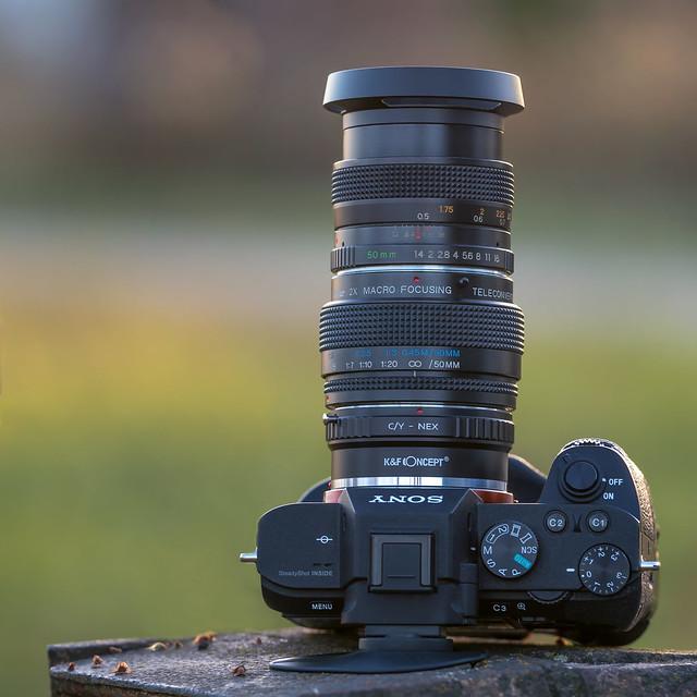 SONY a7II & Yashica ML 50mm f/1.4 on Vivitar 2x Macro Teleplus MC7