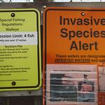 Invasive Species Alert and Special Fishing Regulations - Upper Red Lake, Minnesota