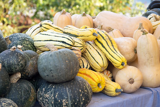 winter squash | by Paul and Jill