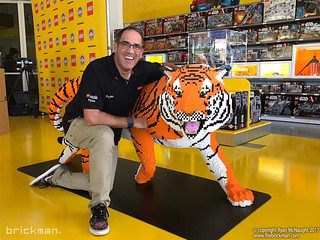 The Tiger at the Dreamworld LEGO store | by TheBrickMan
