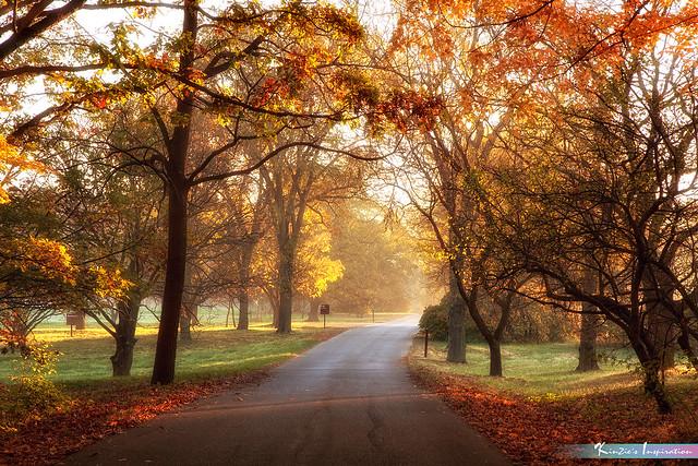 Autumn, The Colorful Season *A Beautiful Nature*