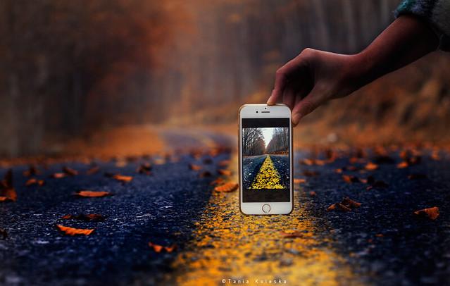 Looking Through My...Phone...