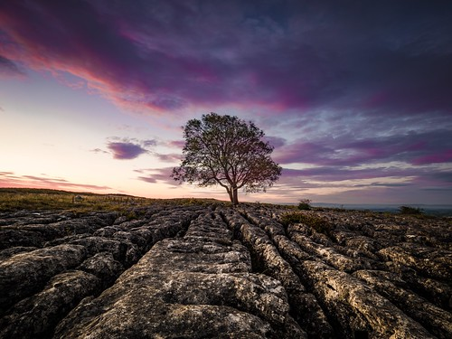 clouds landscape malham nature tree yorkshiredales sunrise lonetree