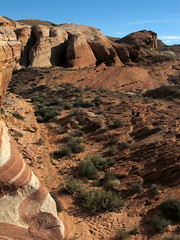 Valley of Fire _185