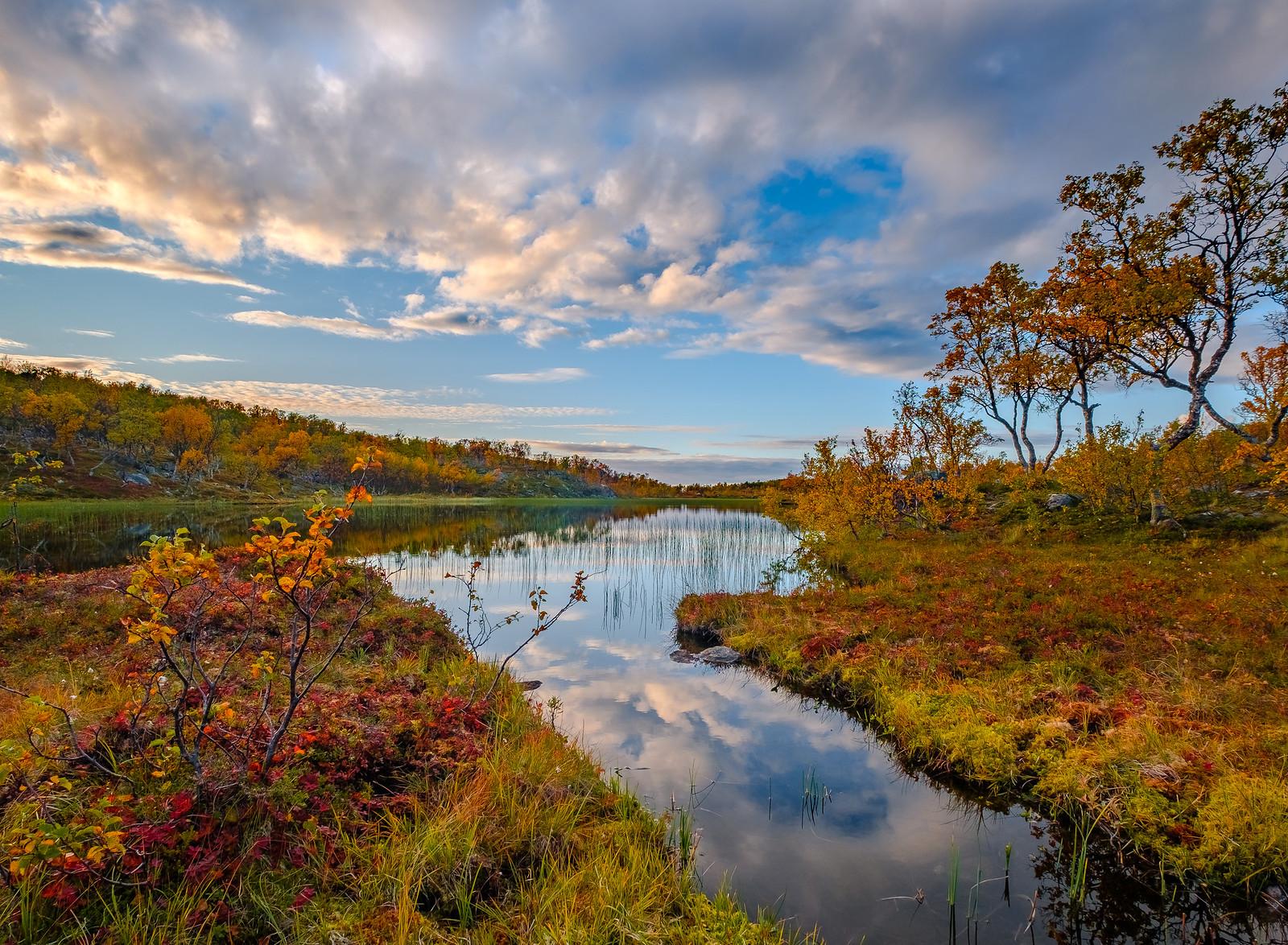 Autumn at Aunfjellet