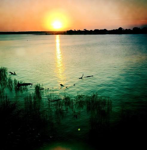 lake granbury