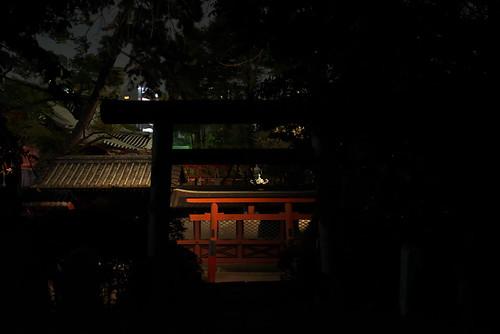 夜の根津神社をNikon D750で撮る | by Tokutomi Masaki