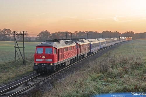 Obersdorf, (Brandenburg). 24.10.08.