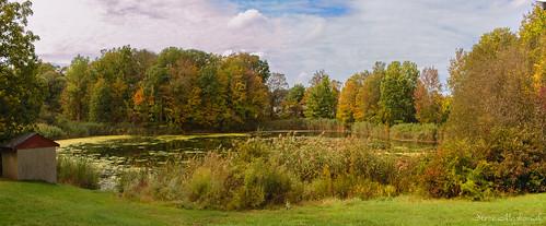 smack53 autumn autumnseason autumncolors fall fallseason trees foliage westmilford newjersey water pond sky clouds outdoors outside scenery scenic landscape nikon d100 nikond100