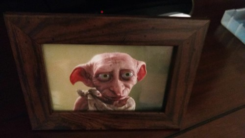 A reminder of the Ozzie Blackey's - Dobby from Harry Potter World | by Haydn Blackey