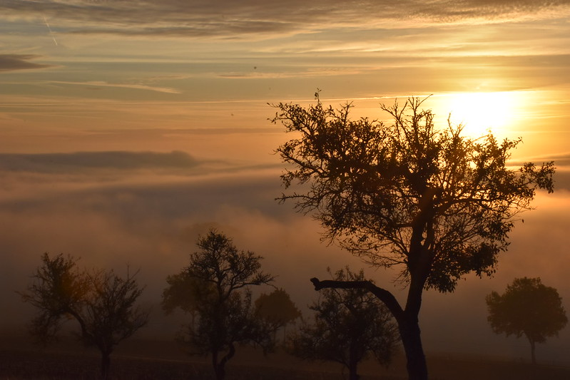 l'aube....sans cesse recommencée