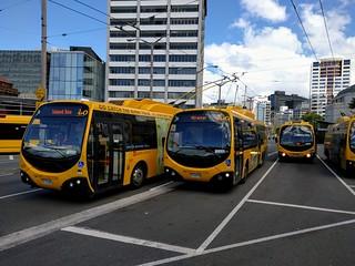 Last Days of the Wellington Trolley Bus
