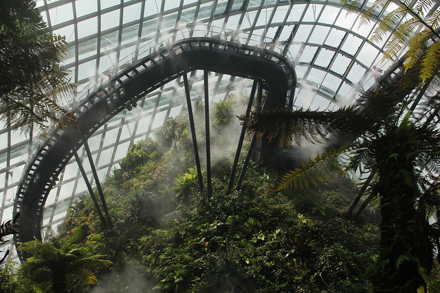 Cloud Forest, Marina Bay Sands