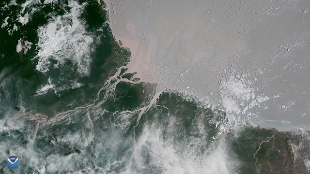 Coral Reefs Discovered where Amazon River Flows into the Atlantic Ocean