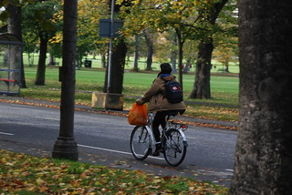 Taking the shopping home | by EdinburghCycleChic