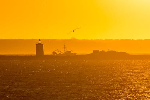 capecod massachusetts provincetown ptown theredinn sunrise lighthouse longpointlight fishingboat boat bird seagull yellow orange cross trawler