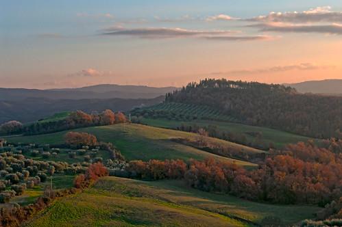 italia italy toscana tuscany maremma cinigiano paesaggio landscape verde green campagna countryside