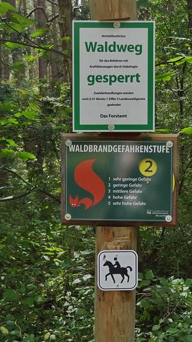 Da taumelt ein Alter die Straße hinab, von einem Knaben geleitet. Der Alte murrt und klagt, und zürnt, so scheint es, mit sich und der Welt, denn Waldweg ist gesperrt im finstern Wald auf Rügen wegen Waldbrandwarnstufe 2 02067