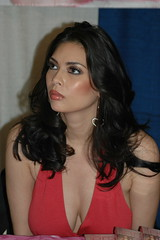 Tera Patrick in red