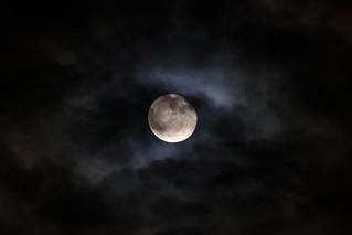 Harvest moon -中秋の名月-   by Akinori YAMADA