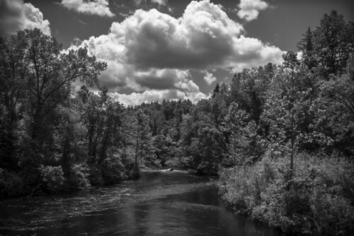 ciel water river reflections trees arbres foret forest clouds storm stormy light bn nb bw noiretblanc blancoynegro blackandwhite lumix panasonic gx7 micro43 mirrorlesscamera vermont arlington newengland mood atmosphere eau riviere reflets nuages orage orageux lumiere ambiance landscape paysage monochrome outdoor nature