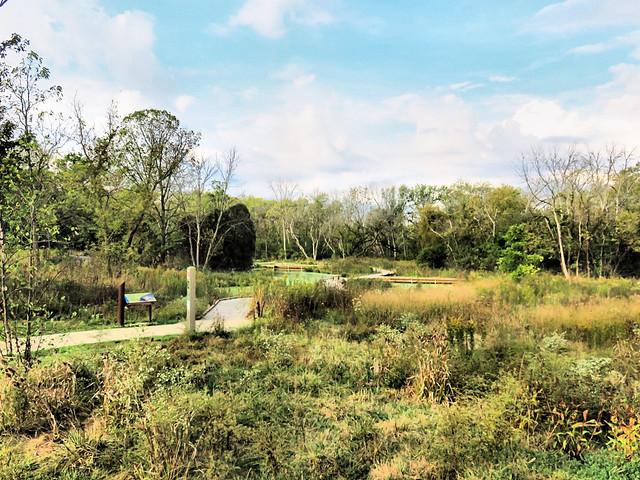 Lippold Park pond and boardwalk 20171002